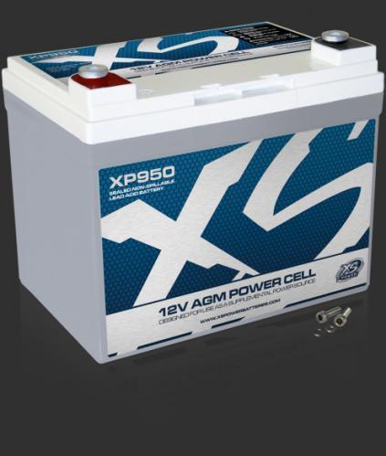 XP950.jpg